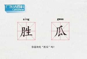 """廣東話百科:勝瓜(你喜歡吃""""勝瓜""""嗎?)"""