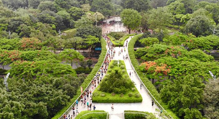 """航拍""""廣州100""""越野賽 展現""""生態之城""""的獨特魅力"""