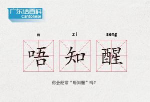 """廣東話百科:唔知醒(你會經常""""唔知醒""""嗎?)"""