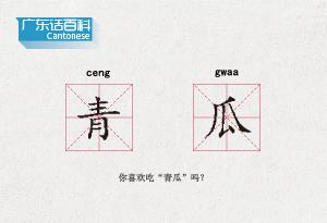 """廣東話百科:青瓜(你喜歡吃""""青瓜""""嗎?)"""