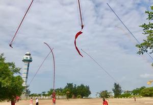 七條百米長濰坊龍頭風箏飛舞于中國大陸南極村